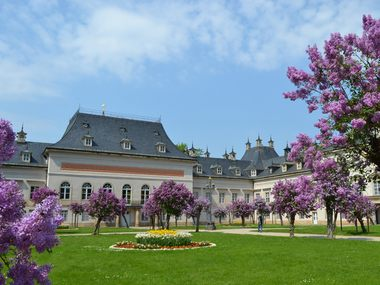 The Lilac Courtyard at the Pillnitz Palace & Park
