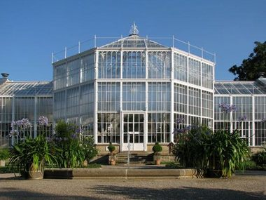 The Pillnitz Palm House